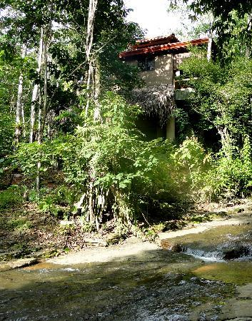 Cascadas Farallas Waterfall Villas: Pic of the villa