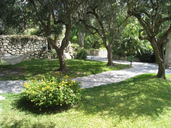 Hotel Tritone Wellness Center: particolare del giardino