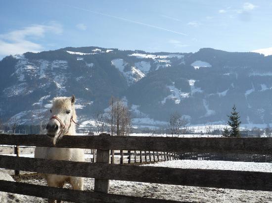 Countryside, Austria near Werfen