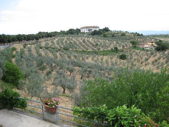 Ristorante Da Delfina: View with Villa Medici in background