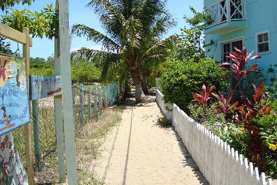 Mirasol Beach Apartment: Path behind Mirasol from sidewalk to the road