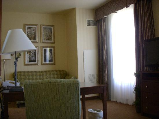 Homewood Suites by Hilton Sacramento Airport-Natomas: View from bed