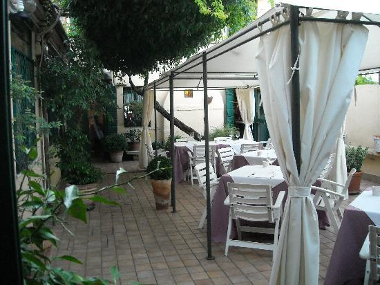 Osteria dalla Pierina : the garden
