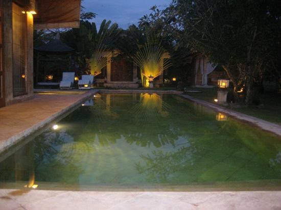 Villa Dermawan: View from the 'dining room'