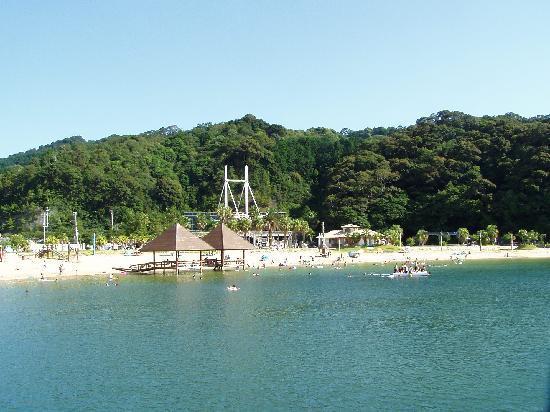 Taiki-cho, ญี่ปุ่น: 美しい海と砂浜