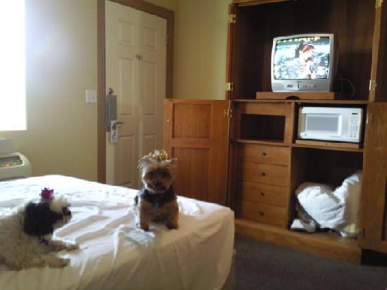 Hotel Pharr Plaza: Armoir of the hotel.