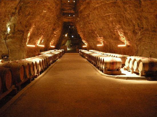 La Vigne Rousse : Wine cellar in Portel-des-Corbières