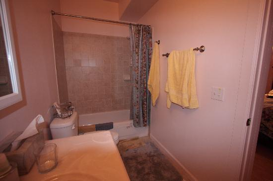 Moose Den Bed & Breakfast: Nugget room bathroom