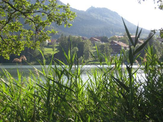 Appartementhotel Seespitz: looking back at the hotel from the lake