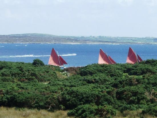 Roundstone Regatta, from the deck of Ard na Mara, Roundstone 2009