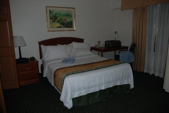 TownePlace Suites St. Petersburg Clearwater: Room 1