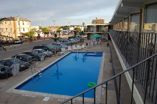 Ocean Sands Motel: The hotel pool