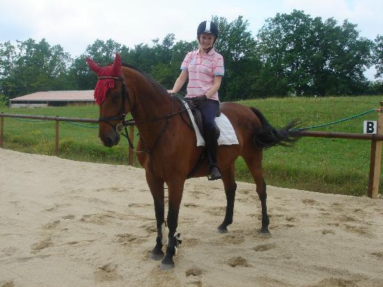 Harris Horses: Yobo