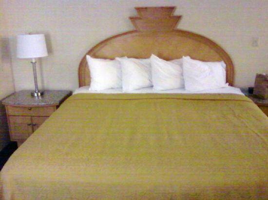 Quality Inn & Suites Greenfield: Bed