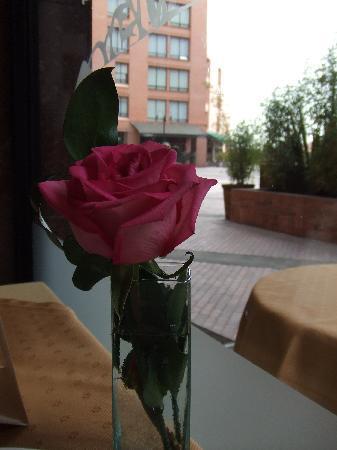 Sheraton Bogota Hotel: View at breakfast