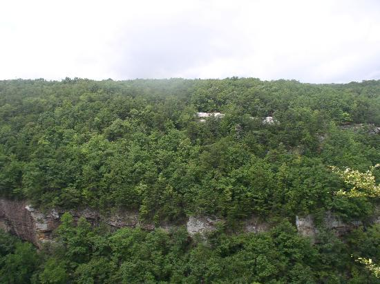Cloudland Canyon State Park: Cloudland Canyon
