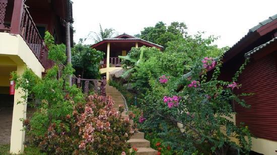 Beautifully maintained gardens among villas at Samui Mountain Village