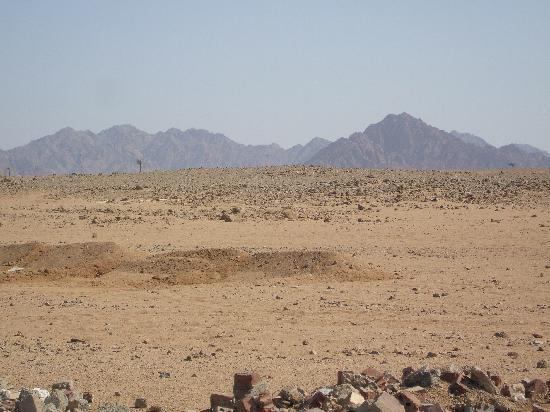 Sonesta Club : le desert derriere l'hotel vous pouvez louer des quads