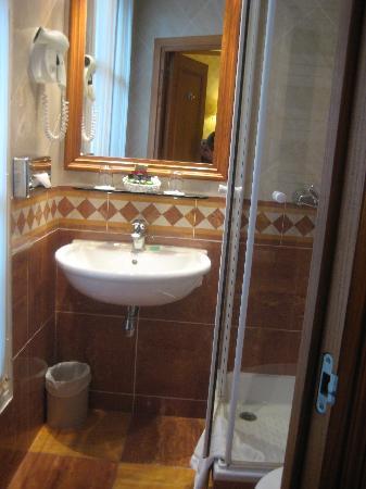 Hotel de Fleurie: bathroom