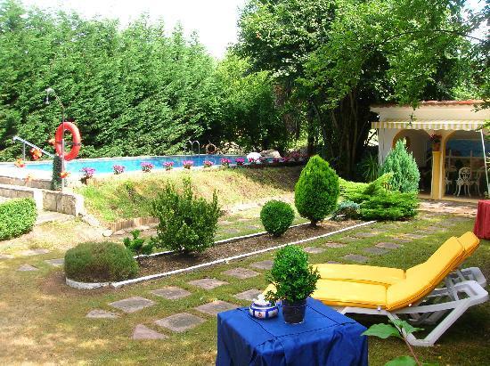 La Real Labranza Villasevil: Jardin y piscina