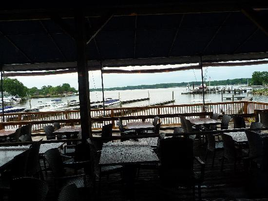 Nauti Goose: View from our table