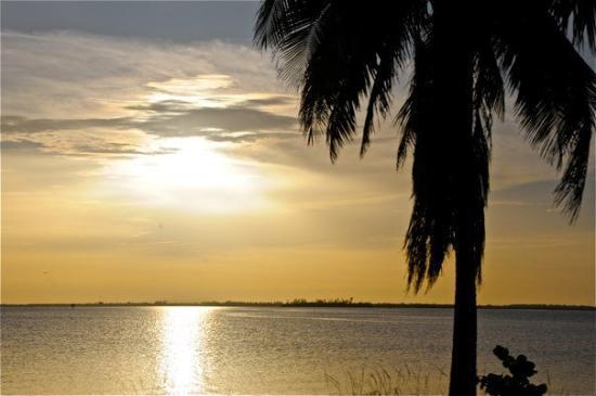 Île de Captiva, Floride : PER_2277