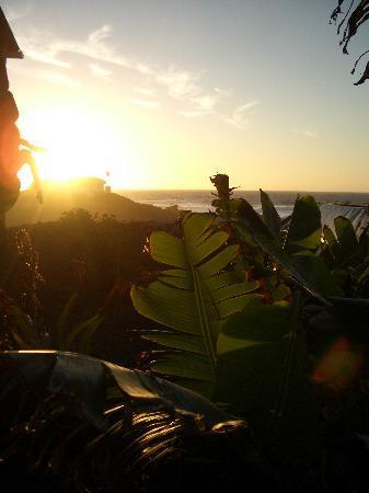 Te'ora: Enjoying the sunset...