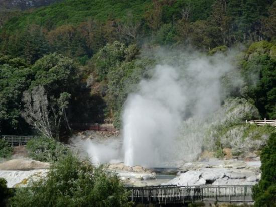 Mitai Maori Village: Steam geyser