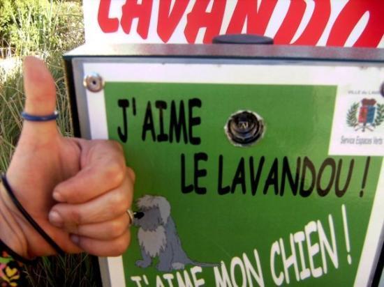 Le Lavandou Photo