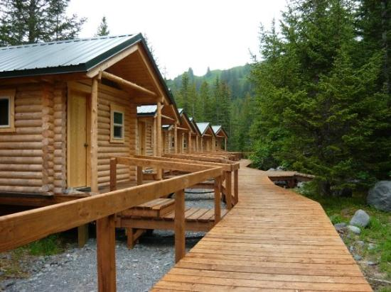 Kenai Fjords Glacier Lodge : Only 16 cabins in the entire National Park area...not the Ritz but super clean and comfy after a