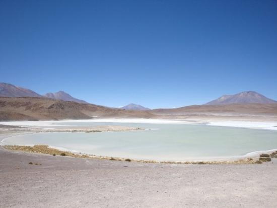 Laguna Blanca, Uyuni, Bolivia - Foto de Uyuni, Potosi ...  Laguna Blanca, ...