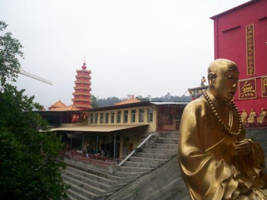 วัดหมื่นพุทธ: At the Ten Thousand Buddhas Monastary, Hong Kong