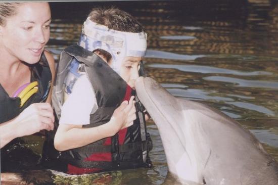 Dolphin Quest : Jacob's Wish