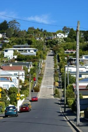 La Baldwin Street di Dunedin é iscritta nel World Book of Records come la strada più ripida (85%