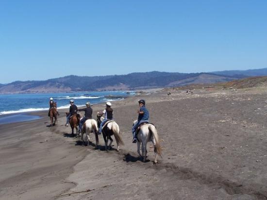 Mendocino Coast: Happy Trails!