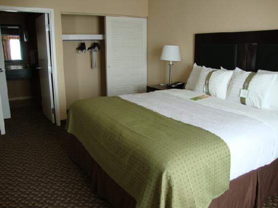 Holiday Inn Hotel & Suites Memphis-Wolfchase Galleria: Bedroom