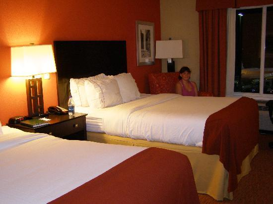 Holiday Inn Express & Suites Chattanooga Downtown: the room