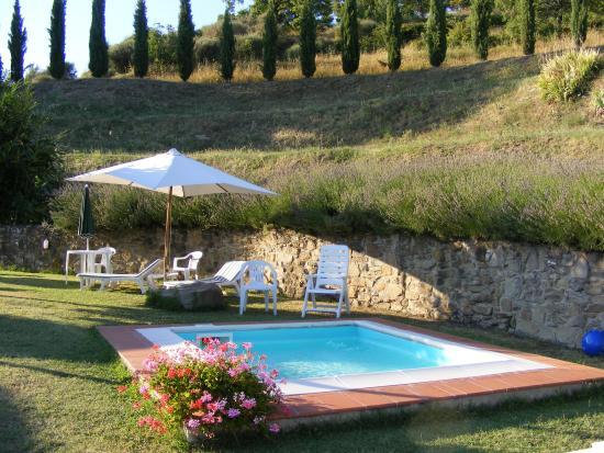 Borgo La Capraia: kiddypool