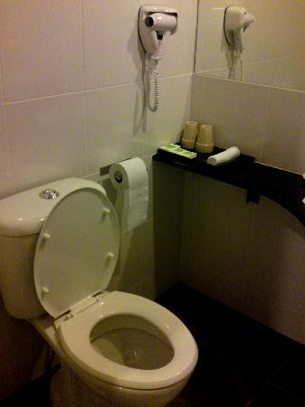 The LimeTree Hotel: Fuss Free Toilet