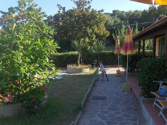 Villaggio Turistico La Valdana: Vialetto del residence