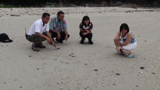 Sibu Island Resort: see u in 20 years........