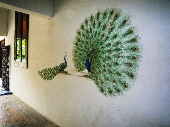 Wall Paint Styles: Picture Of At Niman Conceptual