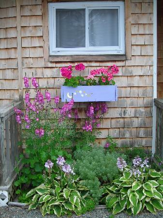 Twilite Motel: Nice floral touch outside the comfy room