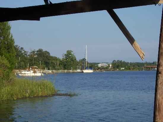 Shell Island Fish Camp: view from banks
