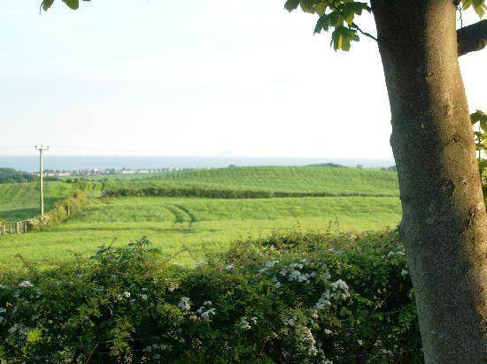 Lochwood Farm Steading: pic-nic area