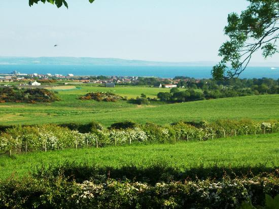 Lochwood Farm Steading: view from cabin