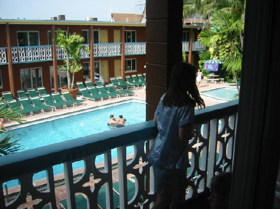 Wakulla Suites  Pool   tropical flora in main Wakulla complex. You see some rooms   Picture of Wakulla Suites  Cocoa Beach