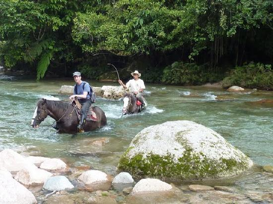 Hosteria Hakuna Matata : Crossing the river on horse near the lodge