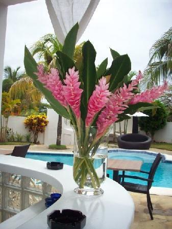 Casa Veintiuno : Fresh Flowers