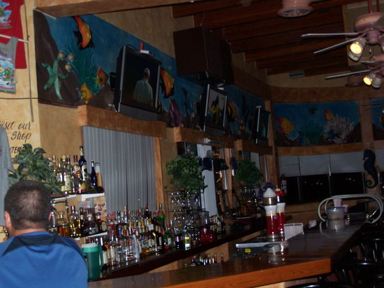 Latitude 31 Restaurant: Eight TVs- All sports, all the time